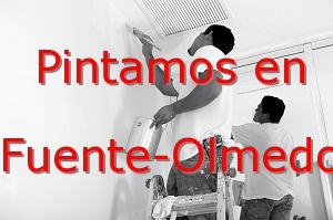 Pintor Valladolid Fuente-Olmedo