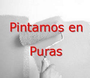 Pintor Valladolid Puras