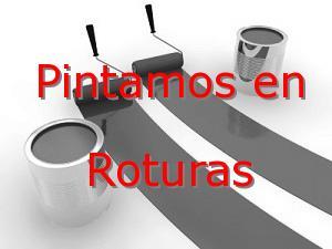 Pintor Valladolid Roturas