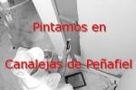 pintor_canalejas-de-penafiel.jpg