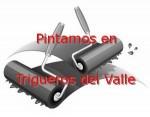 pintor_trigueros-del-valle.jpg