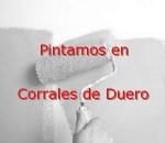 pintor_corrales-de-duero.jpg